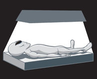 Autopsia straniera Fotografia Stock