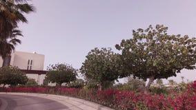 Autoreise zum Hotel Park Hyatt im Abu Dhabi-Vorratgesamtlängenvideo stock footage