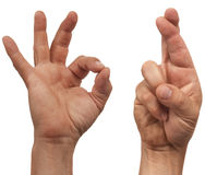 AUTORIZACIÓN y dedos cruzados Fotografía de archivo libre de regalías