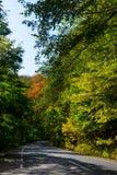 Autoroute nationale par la forêt Photo stock