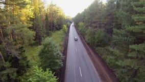 Autos auf der Straße im Wald, Vogelperspektive stock footage