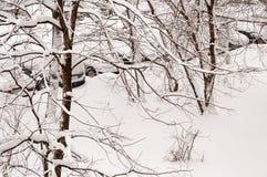Autos bedeckt mit Schnee im Parkplatz während der Schneefälle Lizenzfreie Stockfotos