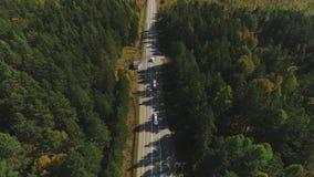 Autos bewegt sich entlang die Landstraße, die durch grünen Wald am sonnigen Tag umgeben wird stock footage