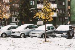 Autos im Parkplatz, umfasst mit Schnee Lizenzfreie Stockbilder