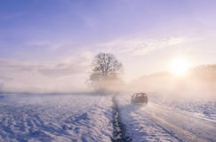 Autoschattenbild durch Nebel auf einem Wintermorgen Stockbild