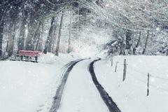 autosporen op sneeuw behandelde straat voor bos met rode bank Royalty-vrije Stock Foto's