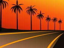 autostrad drzewka palmowe Obraz Royalty Free