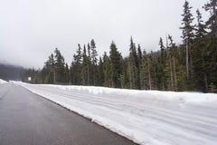 Autostrada bieg przez lasów Waszyngton zakrywał z śnieżnym usa Zdjęcie Royalty Free