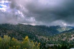 Autostrada ciie California górę Zdjęcie Royalty Free
