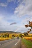 Autostrada dell'itinerario della vite Fotografia Stock