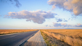 Autostrada przez bezbrzeżnych żółtych łąk Obrazy Royalty Free