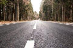 Autostrada przez jesień lasu fotografia stock