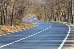 Autostrada przez lasu Fotografia Stock