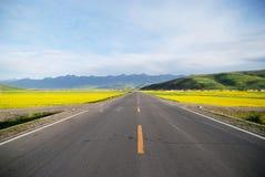Autostrada senza pedaggio di Qinghai Cina Fotografia Stock Libera da Diritti