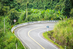 Autostrada w lesie Zdjęcia Stock
