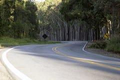 Autostrady scena. Fotografia Stock