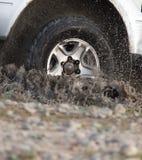 Autowiel in een nevel van vuil en water Royalty-vrije Stock Afbeeldingen