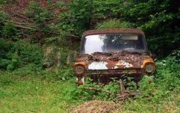 Autowrack in der Natur Stockbilder