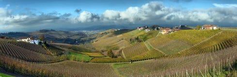 Auttumn de vignobles de Piémont Photographie stock libre de droits