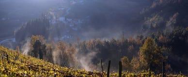Auttumn dos vinhedos de Piedmont Fotos de Stock Royalty Free