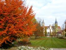 Autum在有leafes的一个公园上色树和灌木在地面,德国上 库存照片