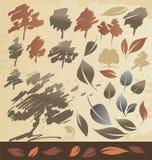 Autum结构树和叶子 图库摄影