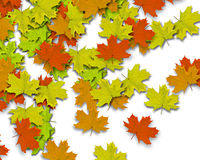 Autum Background. With colorful fall leaves falling down from tree royalty free stock images