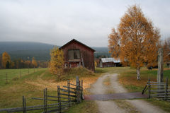 Autum colors. Barn in forest landscape Royalty Free Stock Images