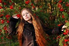 Autum Colors. Young girl among rowan berry trees stock photos