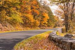 Autum entlang blauen Ridge Parkway lizenzfreies stockfoto