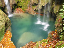 Autum in the forest. In Urbasa, Basque Country Stock Photo