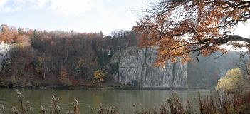 Autum Forest with danube Royalty Free Stock Images