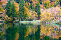 Autum forest lake Kozjak in Plitvice Royalty Free Stock Photo