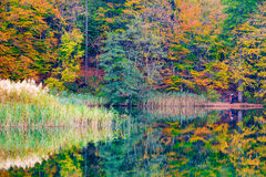 Autum forest lake Kozjak in Plitvice Stock Photo