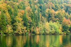 Autum forest lake Kozjak in Plitvice National Park Stock Photos
