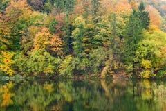 Autum forest lake Kozjak in Plitvice National Park Stock Images