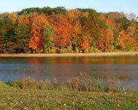 Autum four. Autum day, by the lake Royalty Free Stock Image