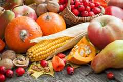 Autum fruit and vegetables. Royalty Free Stock Images
