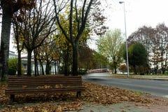 Autum i Lugo fotografering för bildbyråer