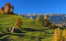 Autum landscape, Romania Stock Photos