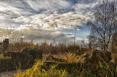 Autum landscape. Wood park garden autum landscape travel walking countryside trees sky cloudy clouds wideangle field forest day afternoon recreation jorny Stock Images
