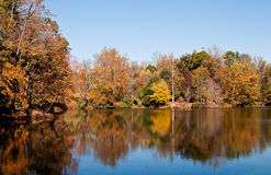 Autum is leaving us. Autumn trees reflected in bass fishing pond royalty free stock photo