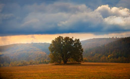 Autum panoramic landscape Royalty Free Stock Images