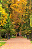 Autum park,Moscow, Russia Royalty Free Stock Image