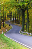 Autum road Royalty Free Stock Image