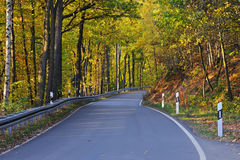 Autum road Stock Photography