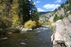 Autum in the rockies. Stock Image