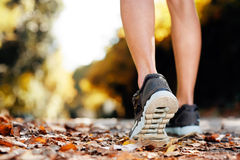 Autum running fitness royalty free stock image