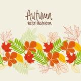 Autum season Royalty Free Stock Photo