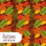 Autum season Stock Photography